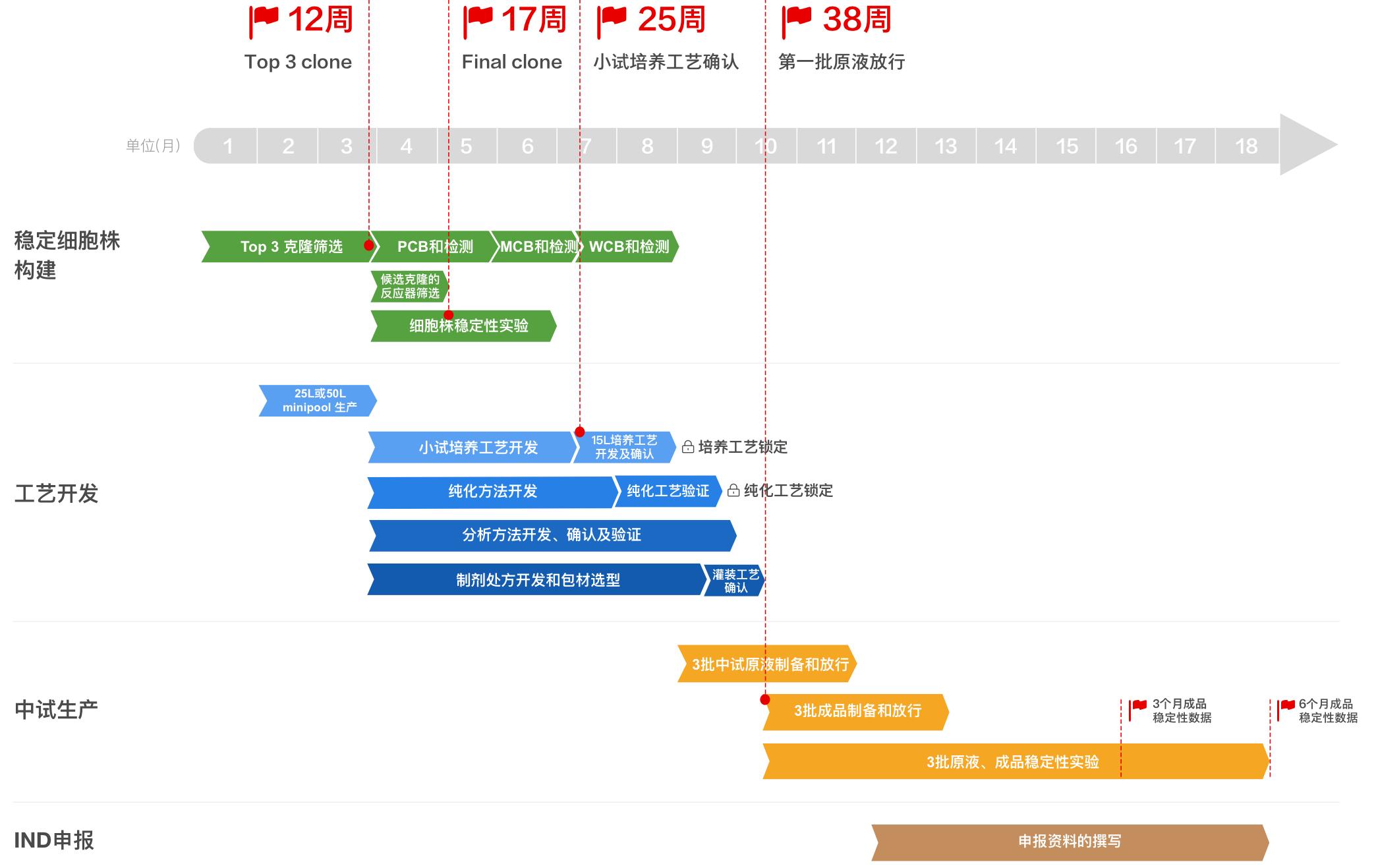 皓阳生物抗体药物CMC 开发时间进度表2-3.png